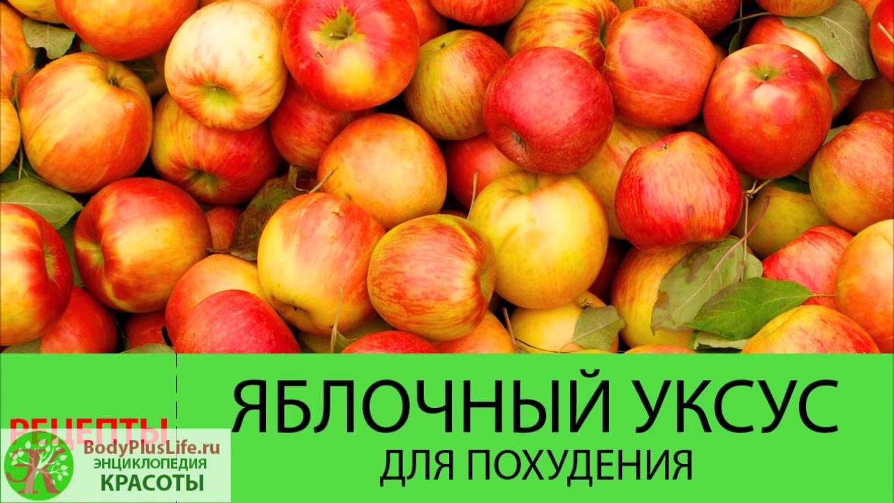 Польза яблочного уксуса для организма человека